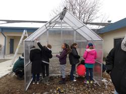 Greenhouse girls