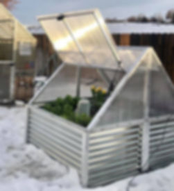 Raised Bed cover snow.jpg
