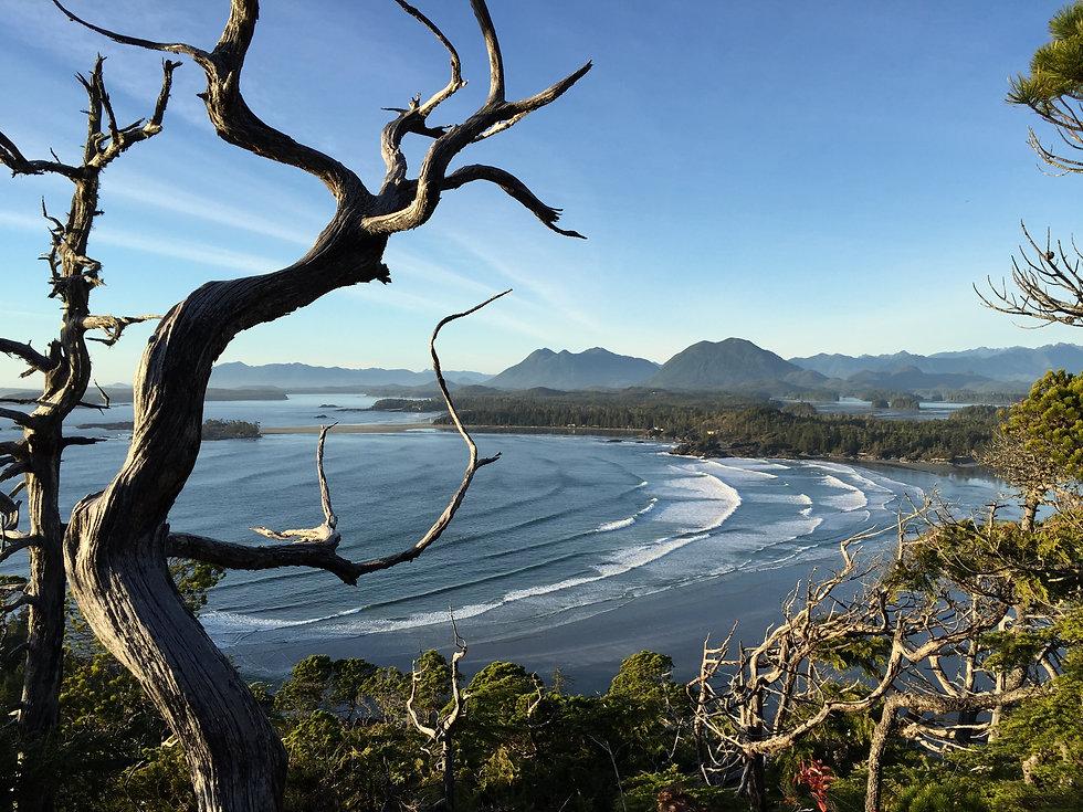 Cox Bay.jpg