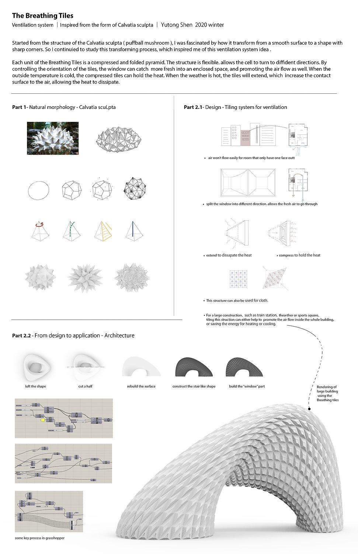 Final presentation Yutong.jpg