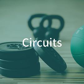 Circuits (2).png