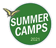 Summer Camp Logo 2021 - Transparent.png