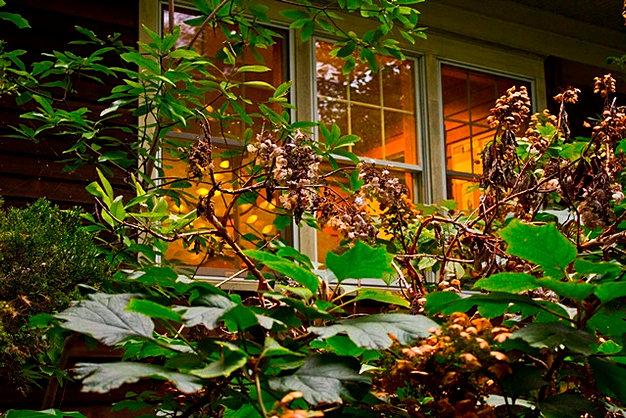 Briar Bush Nature Center Hours