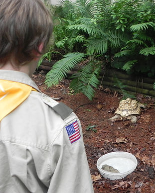 Boy Scout with Tortellini.JPG