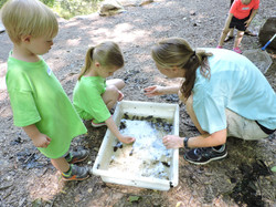 heidi w little kids pond study