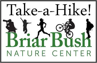 Take A Hike LOGO.png