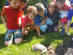 kids with turtle outside