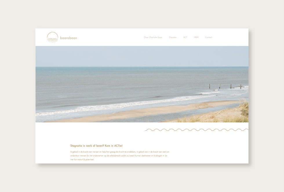 Website - projecten Baan2Baan web 1.png