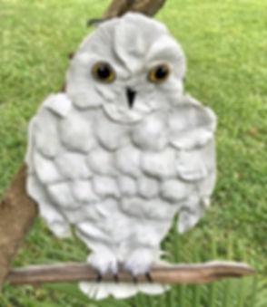 OWL 2018 4_edited_edited_edited.jpg