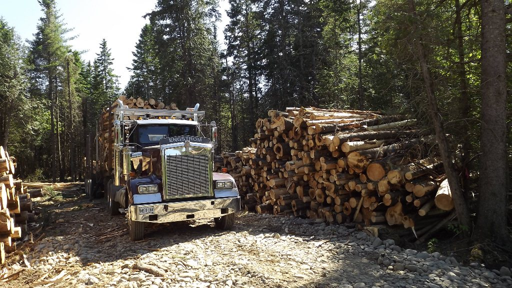 loaded log truck June 5