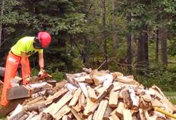 processing firewood