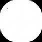 Logotransparentwhite copy.png