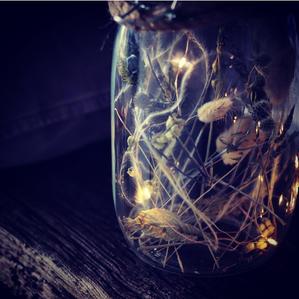 Wild Wood Lantern
