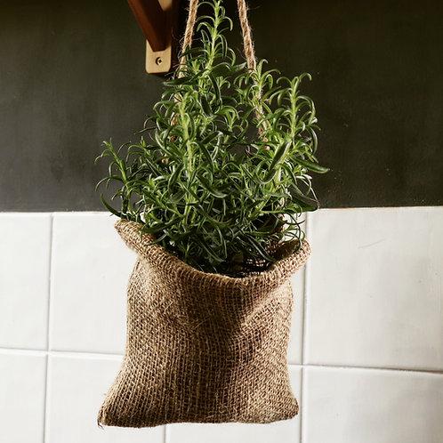 Hanging Eco Planter