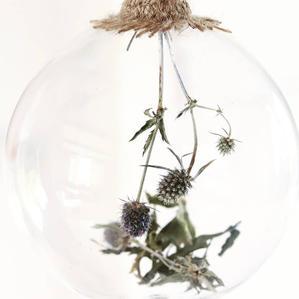 Sea Holly Botanical Glass Bauble