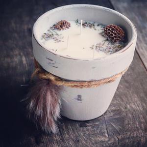 Wild Wander Unscented NaturalCandle Pot