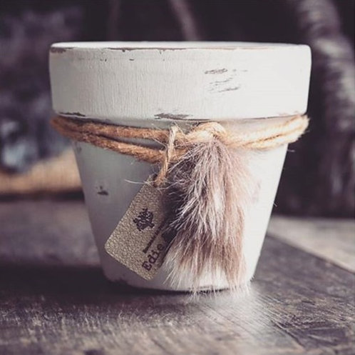 Wild Wander Essential Oil Candle Pot