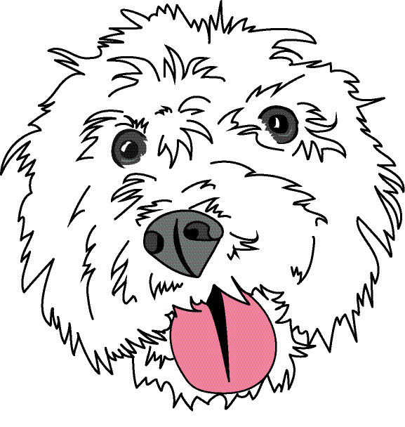 Lucky Dog Video