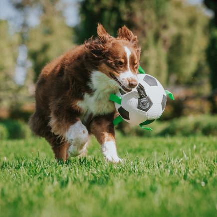 Grab Tabs Soccer Ball