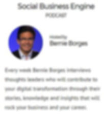 Dan Gingiss and Bernie Borges, Social Business Engine Podcast