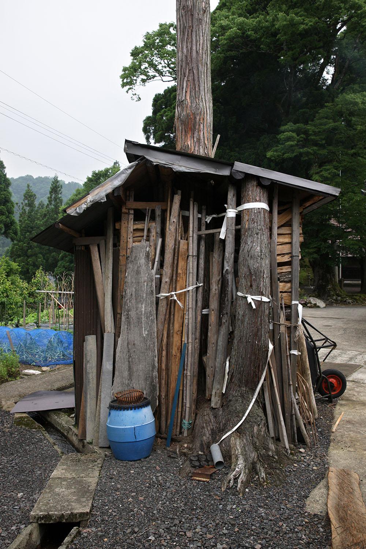 福井県池田町