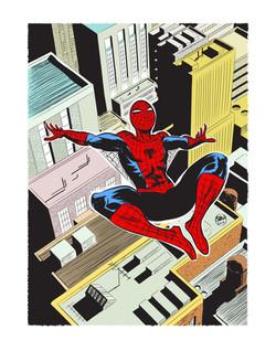 Spiderman coloured_11x14_FA