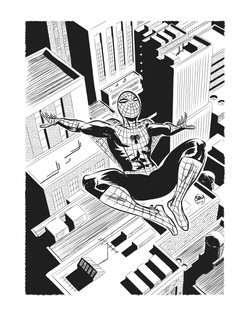 Spiderman_bw_11x14_BW_FA