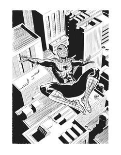 Spiderman_bw_11x14_BW_FA