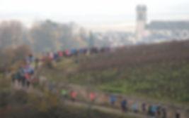 Semi marathon de la Vente des vins