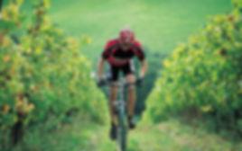 Découvrir la Côte d'Or à vélo