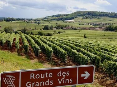 Route des Grands Crus