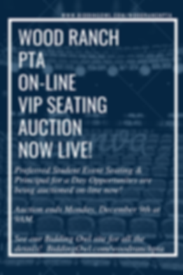 PTA Auction Flyer.png