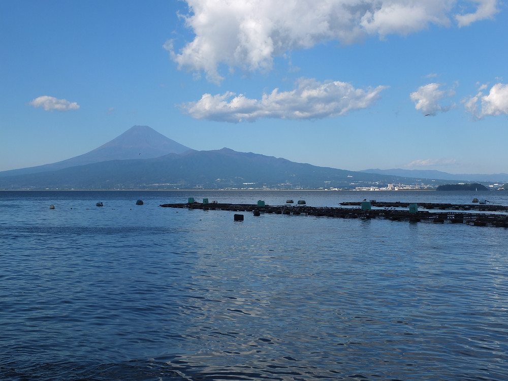 西伊豆からの駿河湾越しの富士山