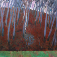 beech forest_45x50_oil_2014.jpg