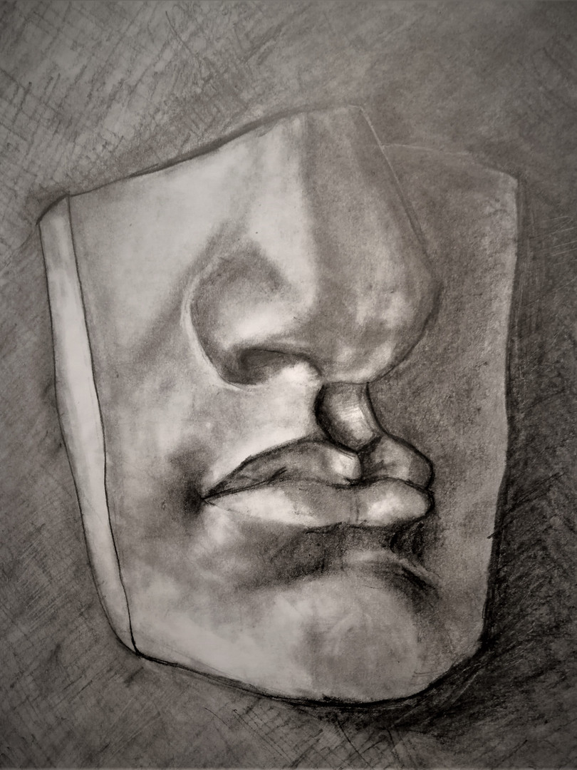 THe Drawing of the face details of Davide