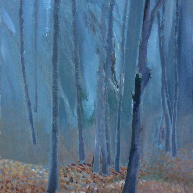 Утро в буковом лесу.50х40.2012.JPG