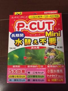P-CUT