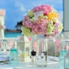 florist-icon4.jpg