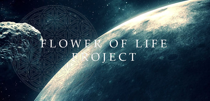 FLOWER OF LIFE PROJECT.jpg