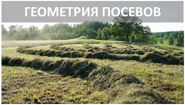 Геометрия посевов.png