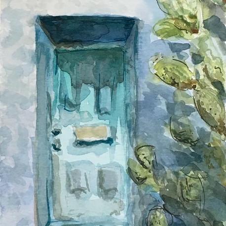 aqua door + cactus