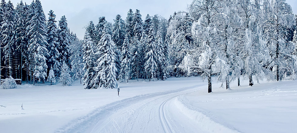 Winter_Feb_2021_2000x900_RGB_ST.jpg