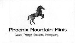 Phx Mt Minis.jpg