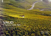 magazine - BELL'EUROPA