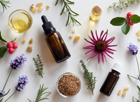 Guest Blog - Celebrating 20 years of Herbal Medicine practice