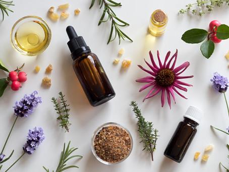 Guest Blog - Celebrating 20 years of Herbal Medicine practice