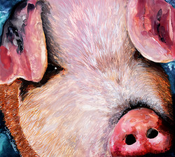 Piggy SueSM