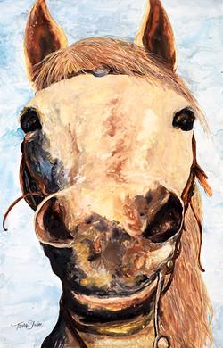 Sierra Beauty (Horse) sm