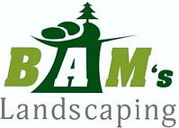bamsland_logo.jpg