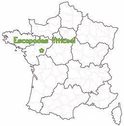 Balades dans le vignoble en Maine et Loire